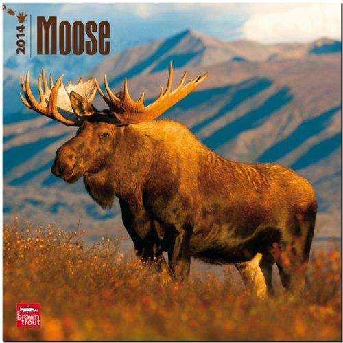 9781465011619: Moose (Multilingual Edition)