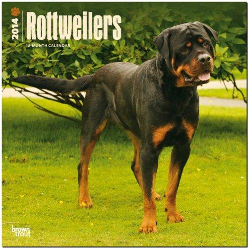 9781465012388: Rottweilers Calendar