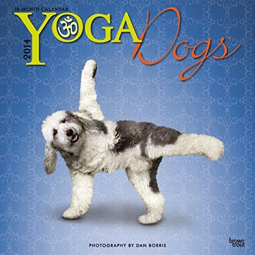 9781465013408: Yoga Dogs (Multilingual Edition)