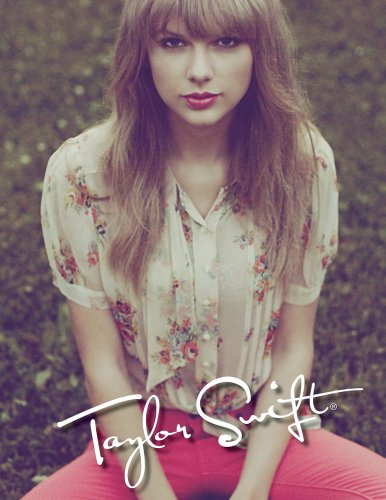 9781465014566: Taylor Swift 2013 Composition Book (Style A)