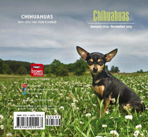 9781465015167: Chihuahuas 2014 Pocket Planner