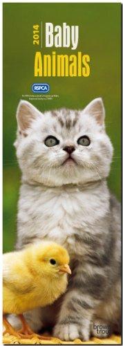 9781465018366: Baby Animals RSPCA 2014 Slim Calendar