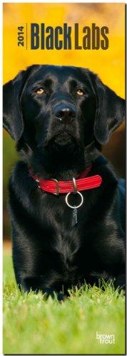 9781465018380: Black Labrador Retriever 2014 Slimline Calendar