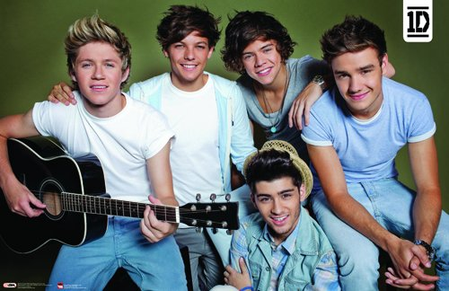 9781465020611: One Direction 2014 Group Guitar Horizontal Poster 34x22