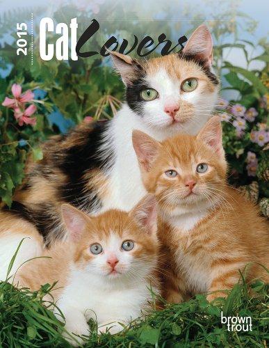 9781465023254: Cat Lovers 2015 Desk Diary