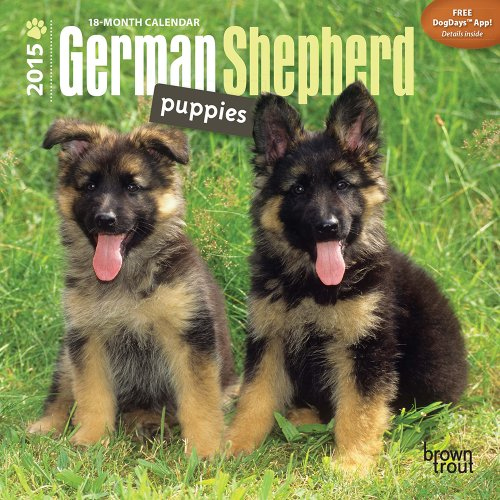 9781465023780: German Shepherd Puppies 2015 Mini 7x7 (Multilingual Edition)