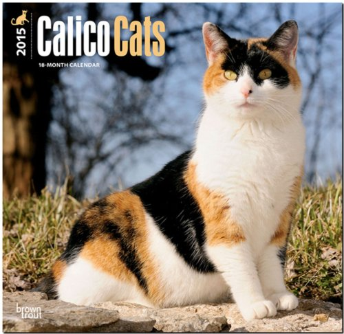 Calico Cats 2015 Square 12x12 (Multilingual Edition): BrownTrout