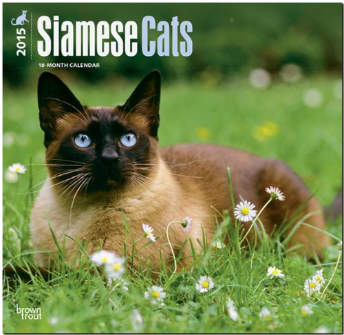 9781465025814: Siamese Cats 2015 Wall