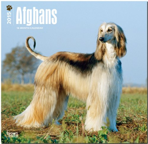 9781465025876: Afghans 2015 Square 12x12 (Multilingual Edition)