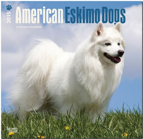 9781465025913: American Eskimo Dogs 2015 Square 12x12 (Multilingual Edition)
