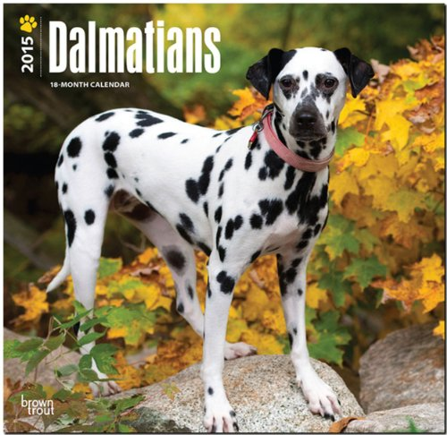 9781465026361: Dalmatians 2015 Square 12x12 (Multilingual Edition)