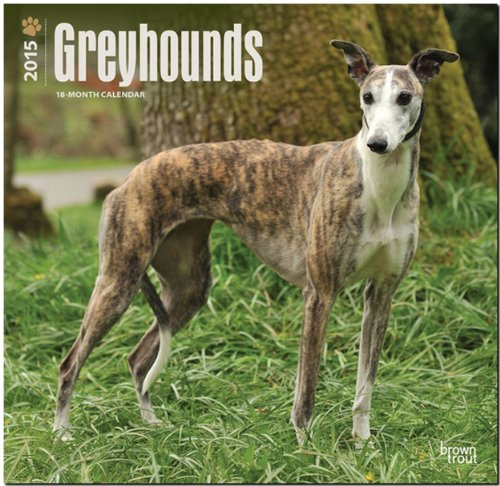 9781465026545: Greyhounds 2015 Wall