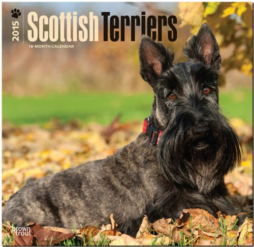 9781465027047: Scottish Terriers 2015 - Scottish Terrier: Original BrownTrout-Kalender