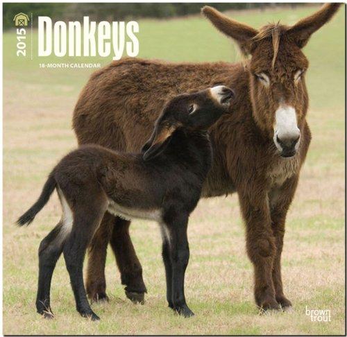 9781465027368: Donkeys 2015 - Esel: Original BrownTrout-Kalender