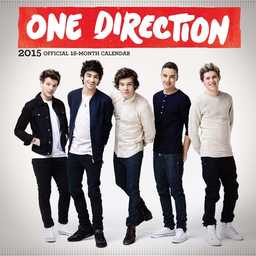 9781465029522: One Direction 18-Month 2015 Calendar