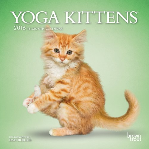 Yoga Kittens 2016 Mini 7x7 (Multilingual Edition): Browntrout Publishers