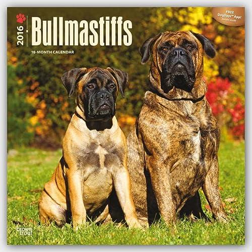 9781465040527: Bullmastiffs 2016 - 18-Monatskalender mit freier DogDays-App: Original BrownTrout-Kalender
