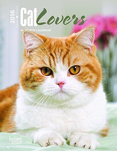 9781465040541: Cat Lovers 2016 Desk Diary