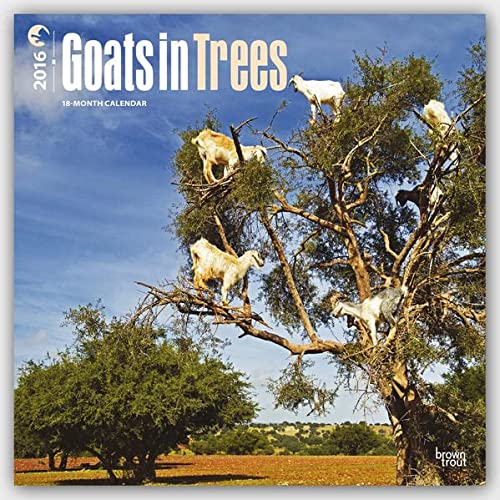 Goats in Trees 2016 Wall: Browntrout Publishers