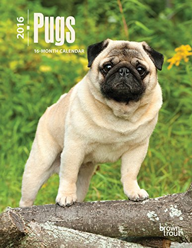 9781465041890: Pugs 2016 Engagement (Multilingual Edition)