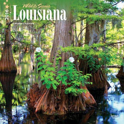 9781465044563: Louisiana, Wild & Scenic 2016 Square 12x12 (Multilingual Edition)