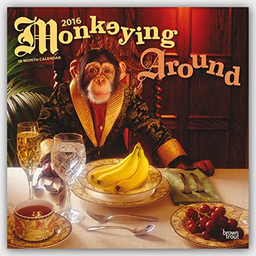 9781465044914: Monkeying Around 2016 Calendar