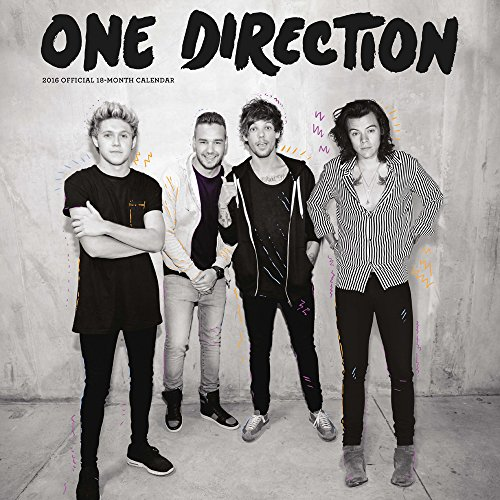 9781465047243: One Direction 2016 Square 12x12 Plato Global