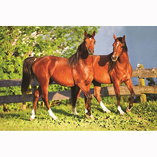 9781465051516: BrownTrout Publishers Horses Doormat