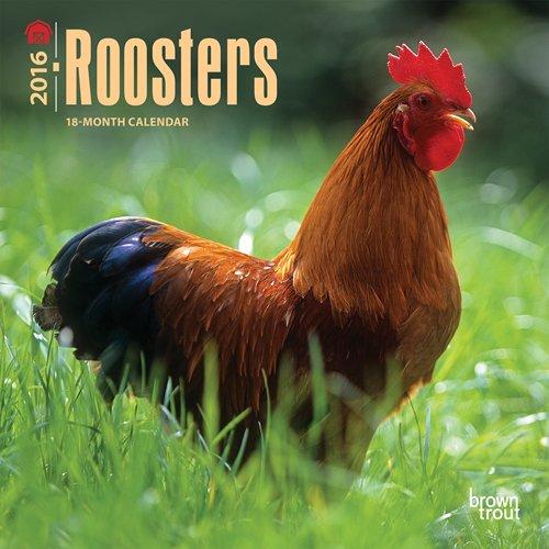 9781465051707: Roosters 2016 Calendar