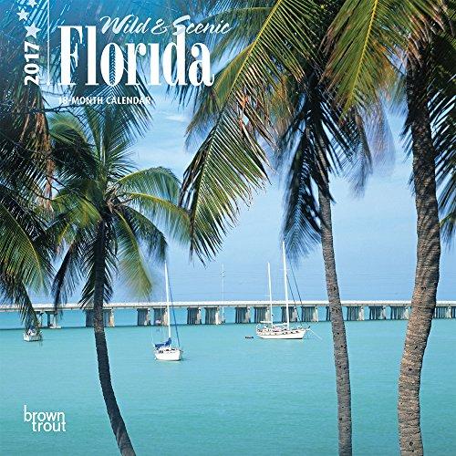 9781465053374: Florida, Wild & Scenic 2017 Calendar