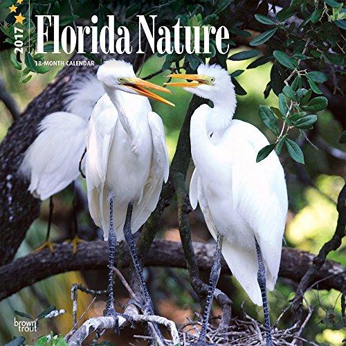 9781465054241: Florida Nature 2017 Calendar
