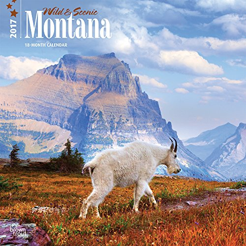 9781465054432: Montana, Wild & Scenic 2017 Calendar