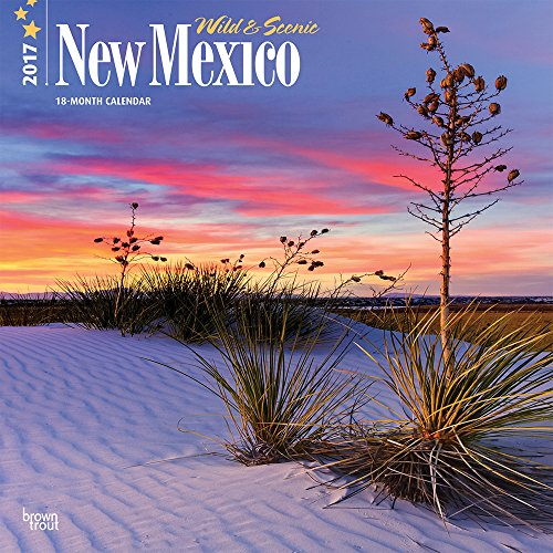 9781465054487: New Mexico, Wild & Scenic 2017 Square
