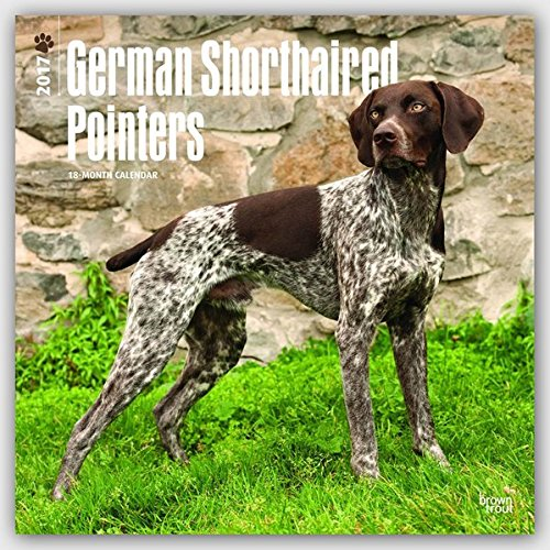 9781465055804: German Shorthaired Pointers 2017 Square