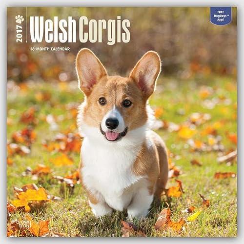 9781465056313: Welsh Corgis 2017 Square (Multilingual Edition)