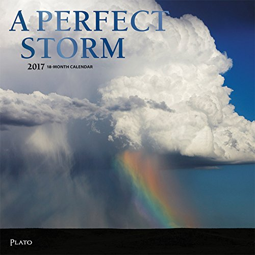 9781465057884: A Perfect Storm 2017 Square Plato (ST Foil)