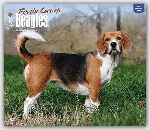 9781465080493: Beagles, For the Love of 2017 Deluxe