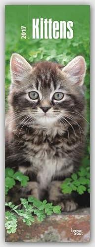 9781465083753: Kittens 2017 Slim Calendar