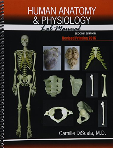 9781465293138: Human Anatomy and Physiology Lab Manual