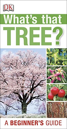 What's that Tree?: DK Publishing