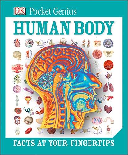 Pocket Genius: Human Body: DK
