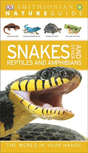 Nature Guide: Snakes and Other Reptiles and Amphibians (NAG.): DK Publishing