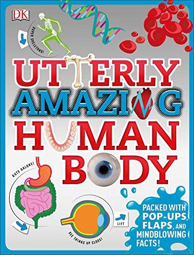 Utterly Amazing Human Body: Winston, Robert