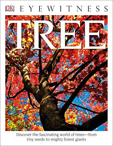 DK Eyewitness Books: Tree: David Burnie