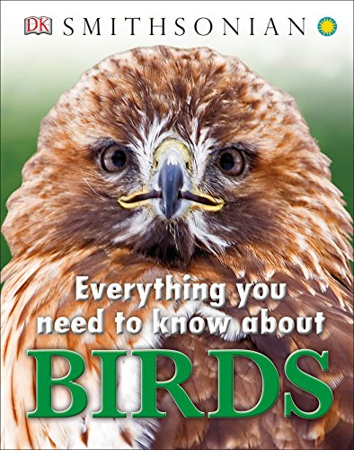 9781465443885: Everything You Need to Know About Birds