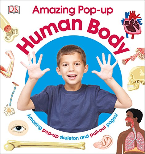 9781465453068: Amazing Pop-Up Human Body