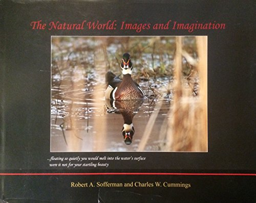 9781467594592: The Natural World; Images and Imagination