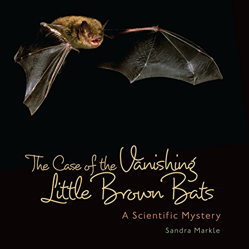 The Case of the Vanishing Little Brown Bats: A Scientific Mystery (Library Binding): Sandra Markle