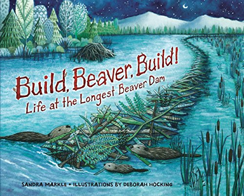 9781467749008: Build, Beaver, Build!: Life at the Longest Beaver Dam (Millbrook Picture Books)