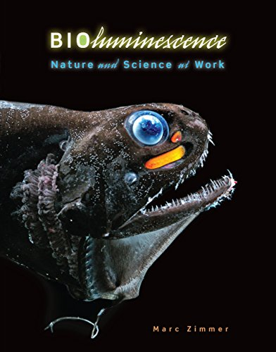 Bioluminescence: Nature and Science at Work (Library Binding): Marc Zimmer